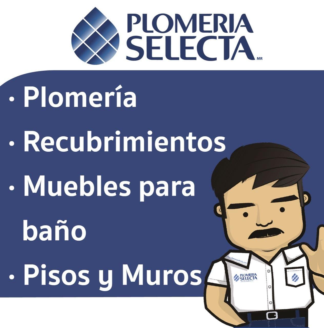PLOMERIA SELECTA
